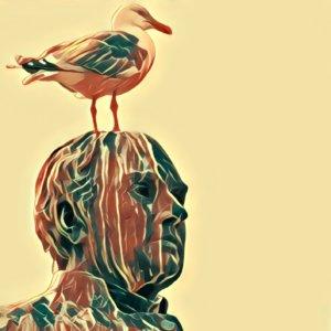 Traumdeutung Vogelkot