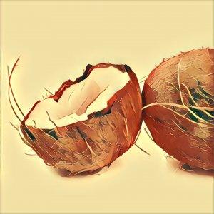 Traumdeutung Kokosnuss