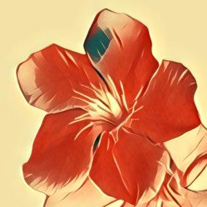 Traumdeutung Oleander