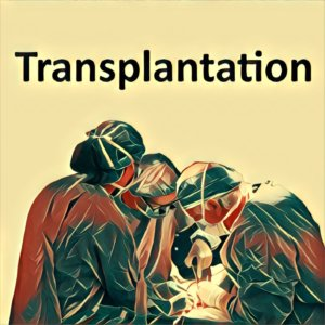 Traumdeutung Transplantation
