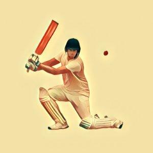 Traumdeutung Cricket