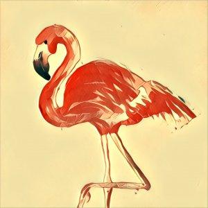 Traumdeutung Flamingo