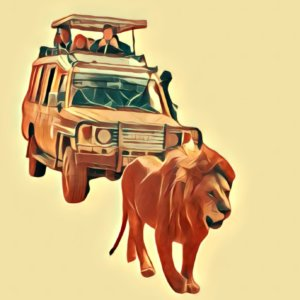 Traumdeutung Safari