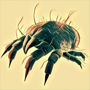 Traumdeutung Parasiten