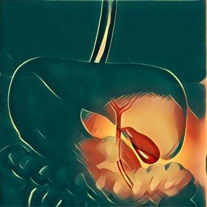 Traumdeutung Galle