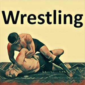 Traumdeutung Wrestling